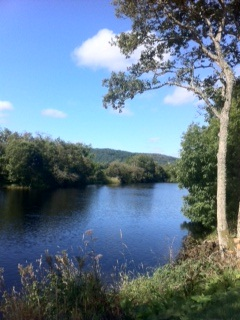 The River Blackwater on yest another beautiful day